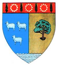 Actual_Teleorman_county_CoA
